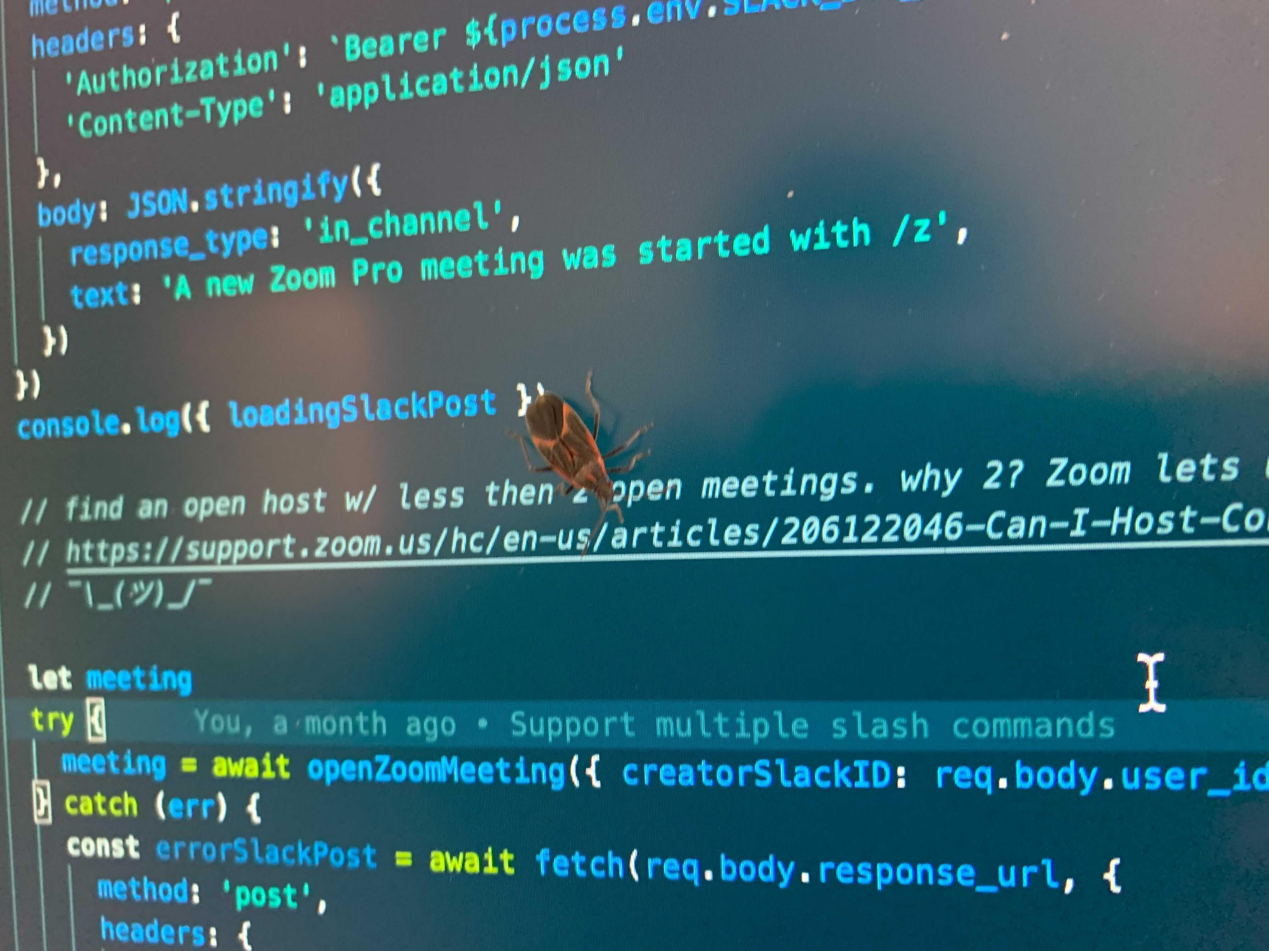 https://cloud-ehoos26m8-hack-club-bot.vercel.app/0image_from_ios.jpg